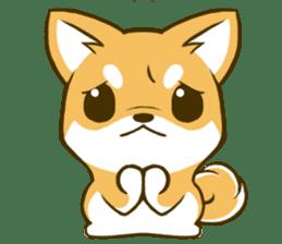 Japanese Shiba Inu tan 2 sticker #6775637