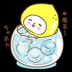 Lemon cat squash