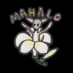 Aloha Iggy Nazuna
