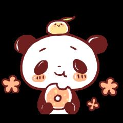 Panda like a dog