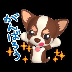 3D Chihuahua Friends