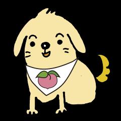 The dog's name is momotarou.