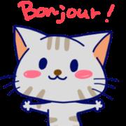 สติ๊กเกอร์ไลน์ Cats in French