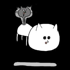 Reticent cat