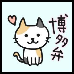 Hakata dialect NEKO