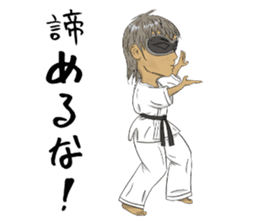 Masked Karate sticker #6828263