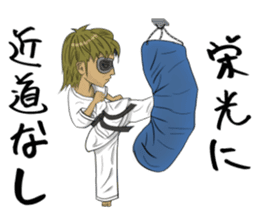 Masked Karate sticker #6828275