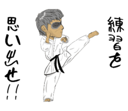 Masked Karate sticker #6828284