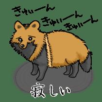 Raccoon and fox sticker #6833626