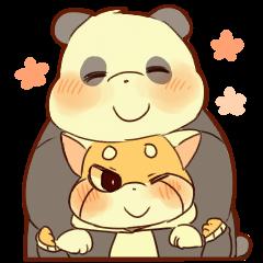 Lesser panda and Panda2