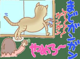 Cat true story 1 (Japanese) sticker #6851229
