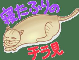 Cat true story 1 (Japanese) sticker #6851230