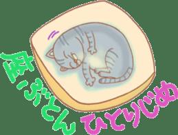 Cat true story 1 (Japanese) sticker #6851239