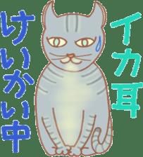 Cat true story 1 (Japanese) sticker #6851244