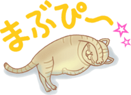 Cat true story 1 (Japanese) sticker #6851248