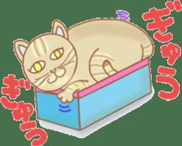 Cat true story 1 (Japanese) sticker #6851249