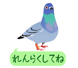 ANIMALS_STICKER4 sticker #6890870