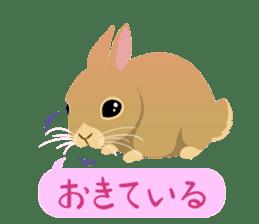 ANIMALS_STICKER4 sticker #6890895