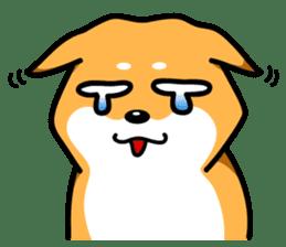 Shiba Inu Genki No.3 sticker #6907395