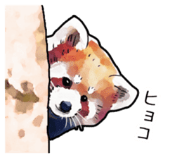 Watercolor red panda sticker sticker #6913713