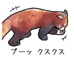Watercolor red panda sticker sticker #6913715
