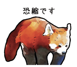 Watercolor red panda sticker sticker #6913717