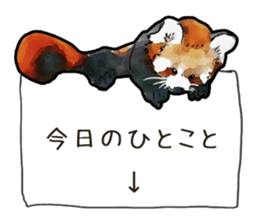 Watercolor red panda sticker sticker #6913725
