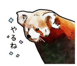 Watercolor red panda sticker sticker #6913730