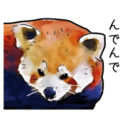 Watercolor red panda sticker sticker #6913731