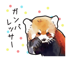 Watercolor red panda sticker sticker #6913734