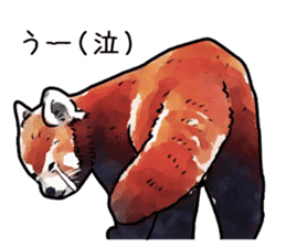 Watercolor red panda sticker sticker #6913742