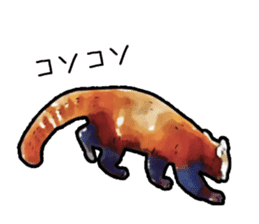 Watercolor red panda sticker sticker #6913750