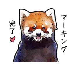 Watercolor red panda sticker sticker #6913751