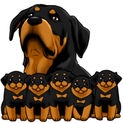 The Rottweilers.