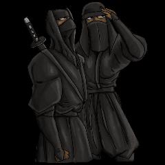 Cool ninja 2