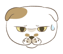 The daily life done freely of funny cat sticker #6937758