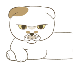 The daily life done freely of funny cat sticker #6937767