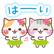 สติ๊กเกอร์ไลน์ Animated Cats 5 (Summer)