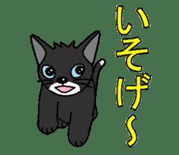 I LOVE CUTE CAT sticker #6964727