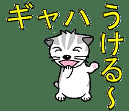 I LOVE CUTE CAT sticker #6964728