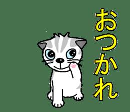 I LOVE CUTE CAT sticker #6964731