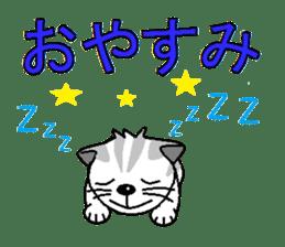 I LOVE CUTE CAT sticker #6964738