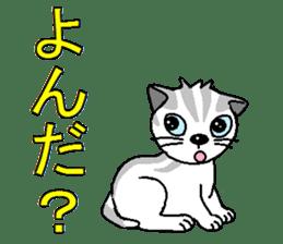 I LOVE CUTE CAT sticker #6964758