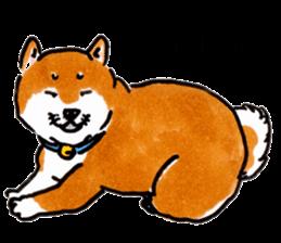 Life of the Shiba(English ver.) sticker #6966361