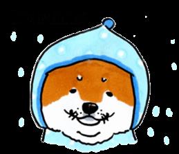 Life of the Shiba(English ver.) sticker #6966365
