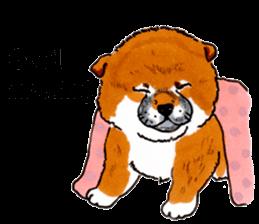 Life of the Shiba(English ver.) sticker #6966374