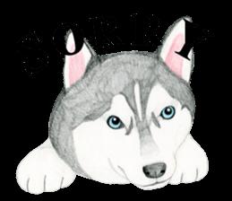 Siberian Husky Stickerenglish By Ice Sticker 6967117