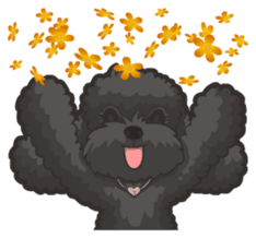 Hi! Poodles sticker #6968625