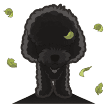 Hi! Poodles sticker #6968631