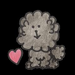 mamesuke hayashi(toy poodle)